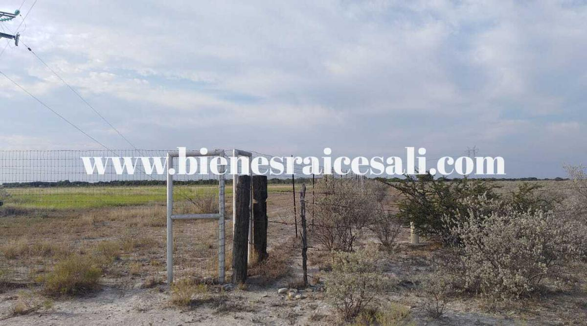 Foto Terreno en Venta en  Morelos,  Piedras Negras  24 hectáreas en venta en Morelos, Coahuila