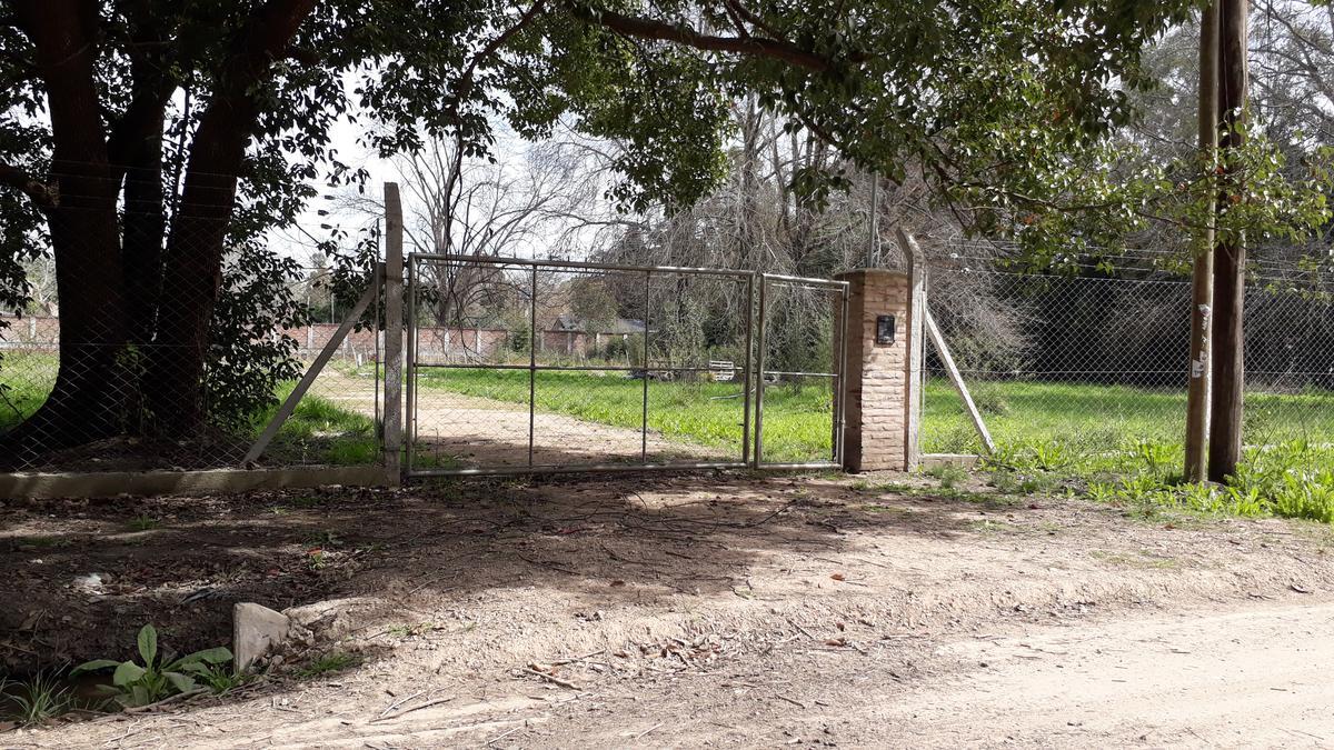 Foto Terreno en Venta | Alquiler en  Villa Rosa,  Pilar          Palma