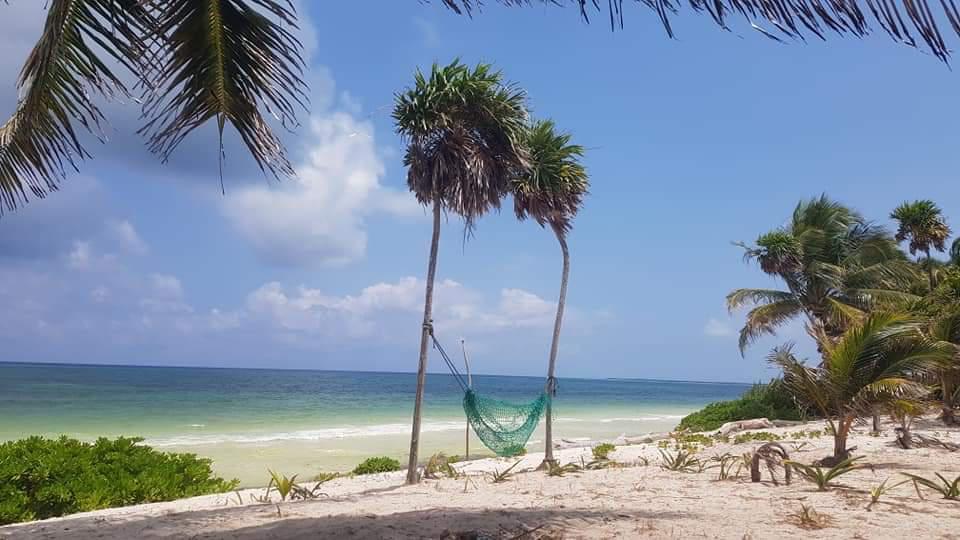 Foto Terreno en Venta en  Boca Paila,  Tulum   terreno beach front    BOCA PAILA