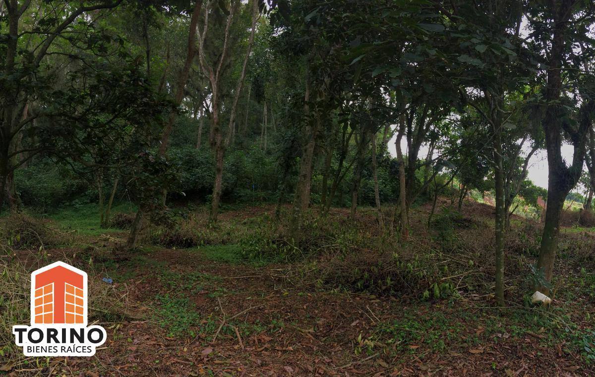 Foto Terreno en Venta en  Coatepec ,  Veracruz  TERRENO EN $1,600M2 CARRETERA ANTIGUA A COATEPEC