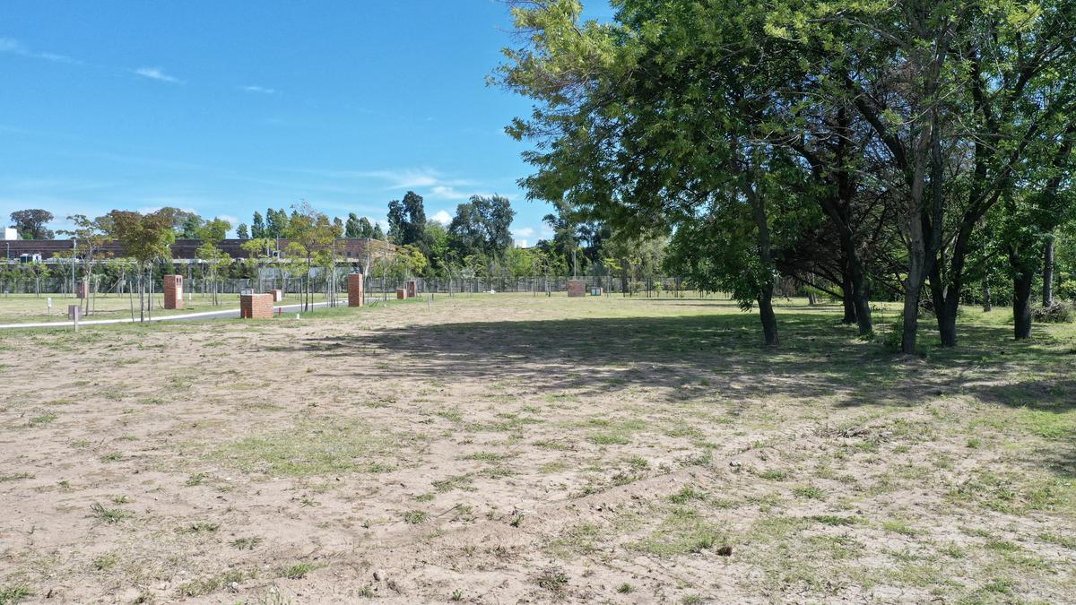 Terreno - Las Lomas-San Isidro-7