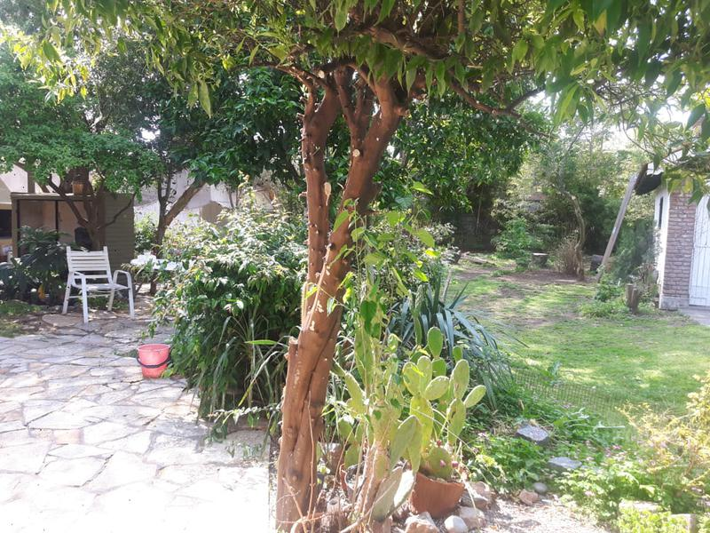 Foto Casa en Venta en  Barrio Parque Palihue,  Bahia Blanca  CHALET  EN BAHIA BLANCA