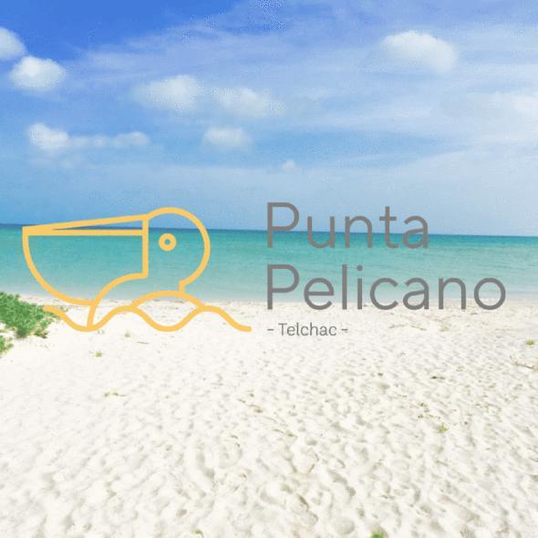 Foto Terreno en Venta en  Telchac Puerto ,  Yucatán                  Terrenos de inversion en Yucatan, proyecto Punta Pelícano Telchac