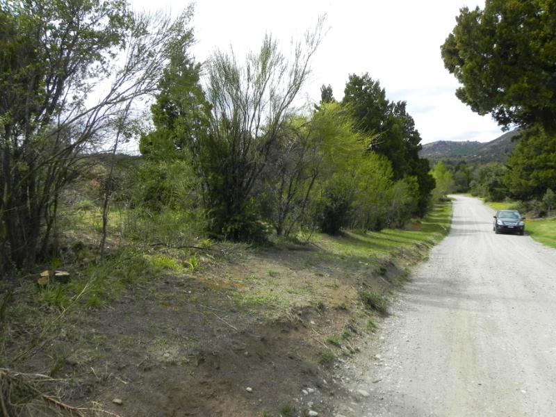 Foto Terreno en Venta en  Arelauquen,  Bariloche  Lote en Area T Zona Rinconada