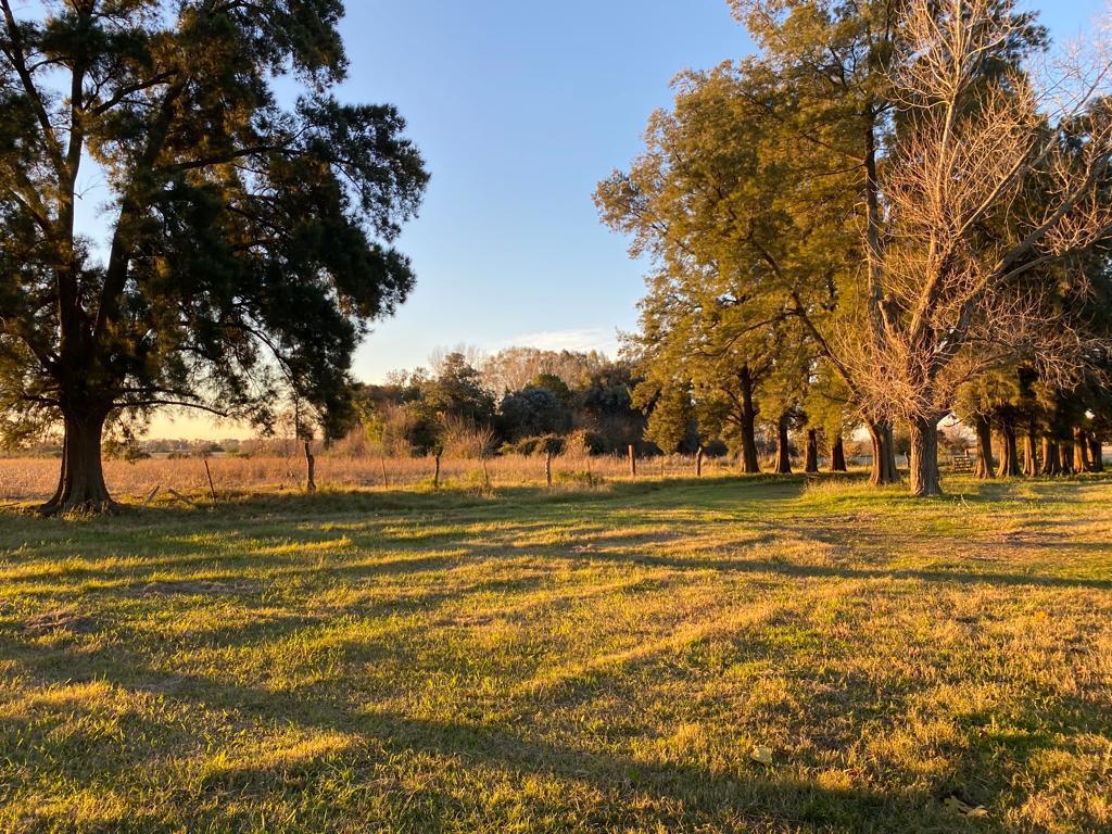 Foto Campo en Venta en  Virrey Del Pino,  La Matanza  Ruta 3 Km 44