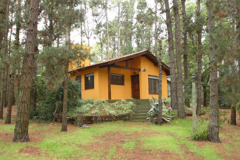 Foto Casa en Alquiler temporario en  Mar De Las Pampas ,  Costa Atlantica  La Intrusa