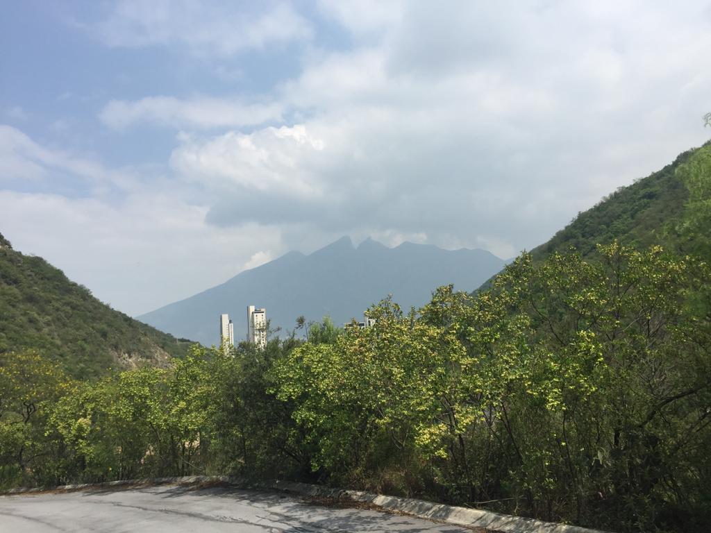 Foto Terreno en Venta en  Renacimiento,  Monterrey  VENTA TERRENO RENACIMIENTO SAN PEDRO GARZA GARCIA