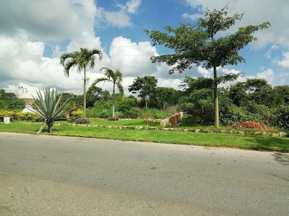 Foto Terreno en Venta en  Pueblo Chicxulub,  Chicxulub Pueblo  Terrenos de oportunidad para inversión residencial en Chicxulub Pueblo, Yucatán; al norte de Mérida.