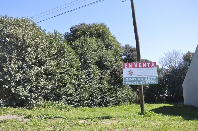 Foto Terreno en Venta en  General Belgrano,  General Belgrano  Calle 59 entre 120 y al 100