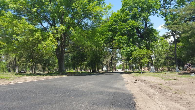 Foto Terreno en Venta en  Longchamps,  Almirante Brown  Manuela Pedraza esquina Roger - Barrio La Arboleda