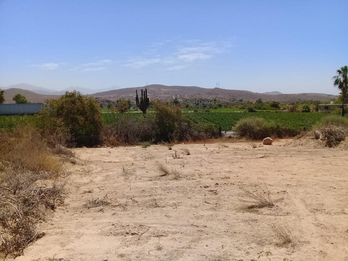 Foto Terreno en Venta en  La Paz ,  Baja California Sur  Terreno La Horcadita 1