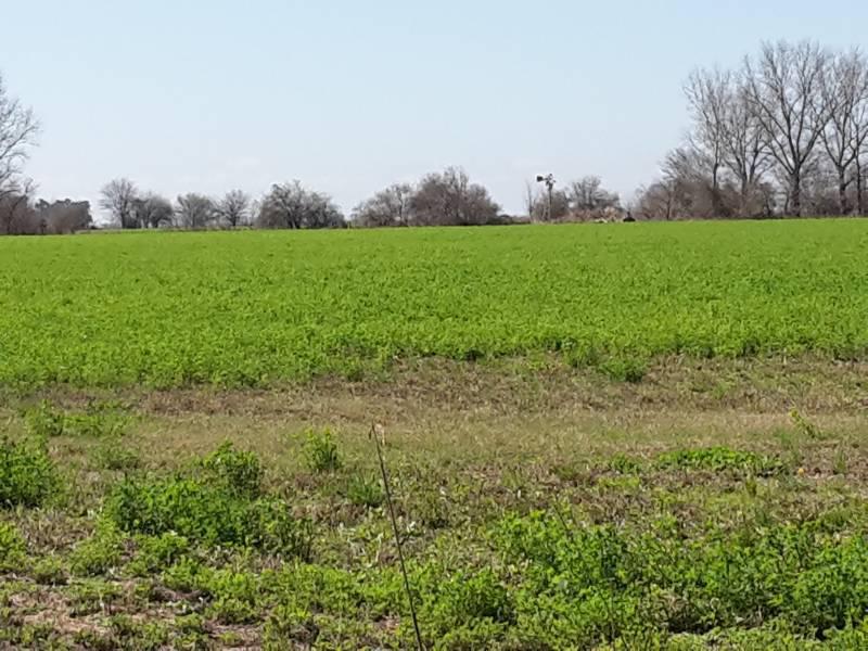Foto Campo en Venta en  Roldán ,  Santa Fe  Fiambala al 1500