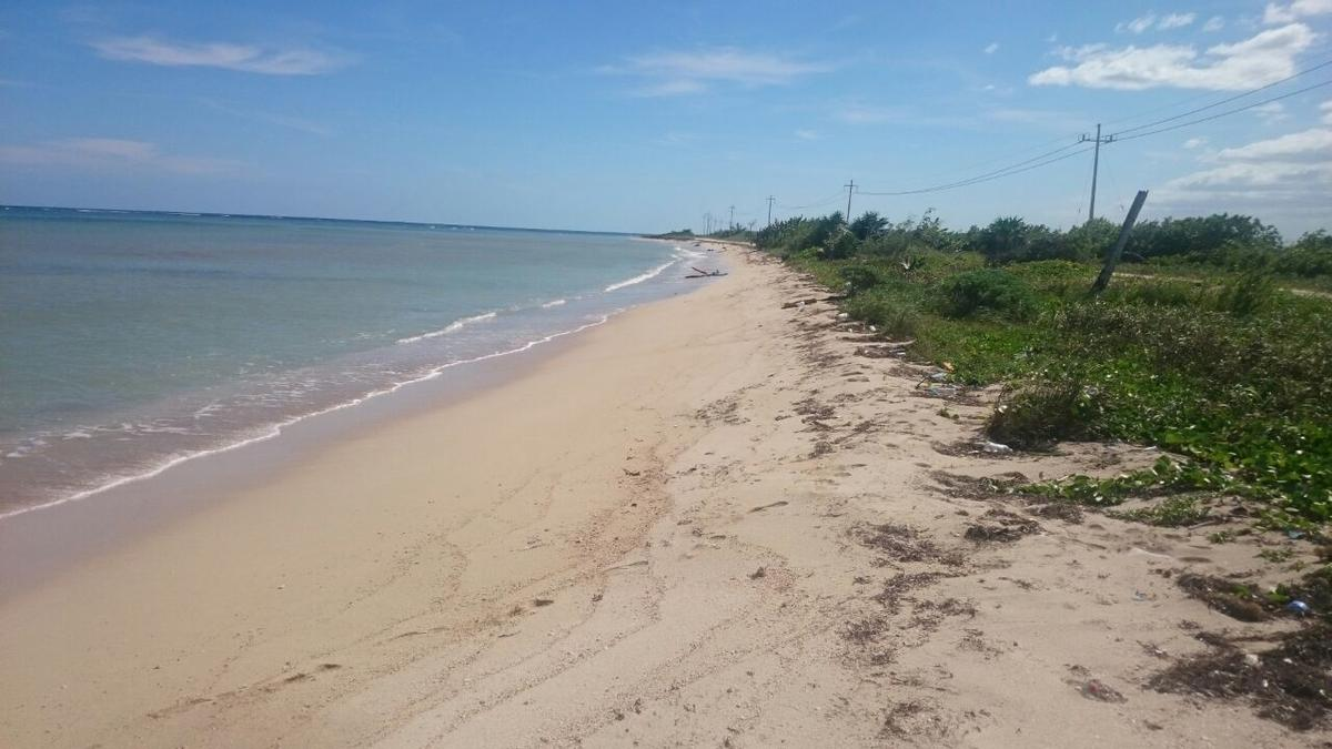 Foto Terreno en Venta |  en  Mahahual,  Othón P. Blanco  Terreno frente mar con 50 mts de playa en Mahahual