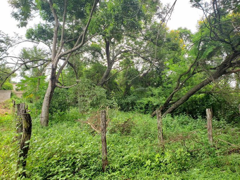 Foto Terreno en Venta en  Mariano Roque Alonso ,  Central  Zona Parroquia Ñandejara Guasú