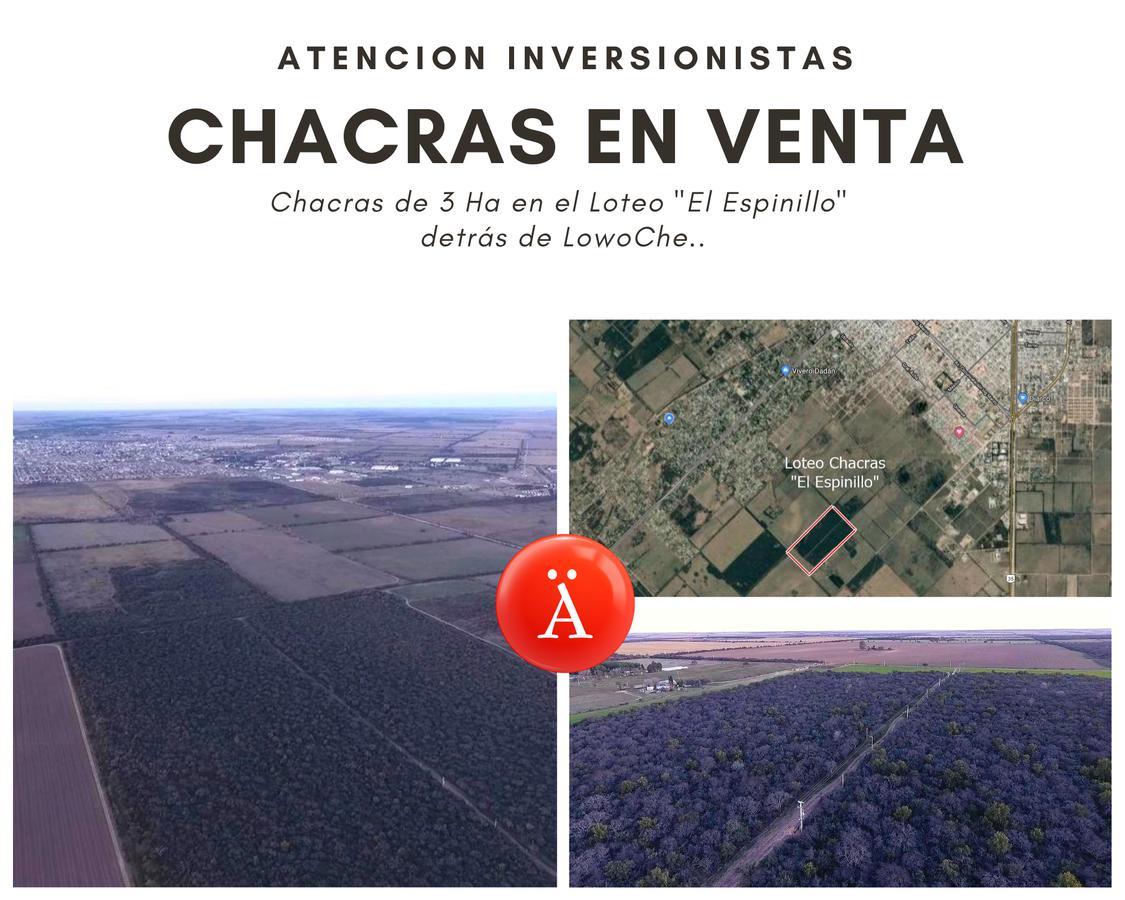 Foto Chacra en Venta en  Toay ,  La Pampa  Ñandu sur