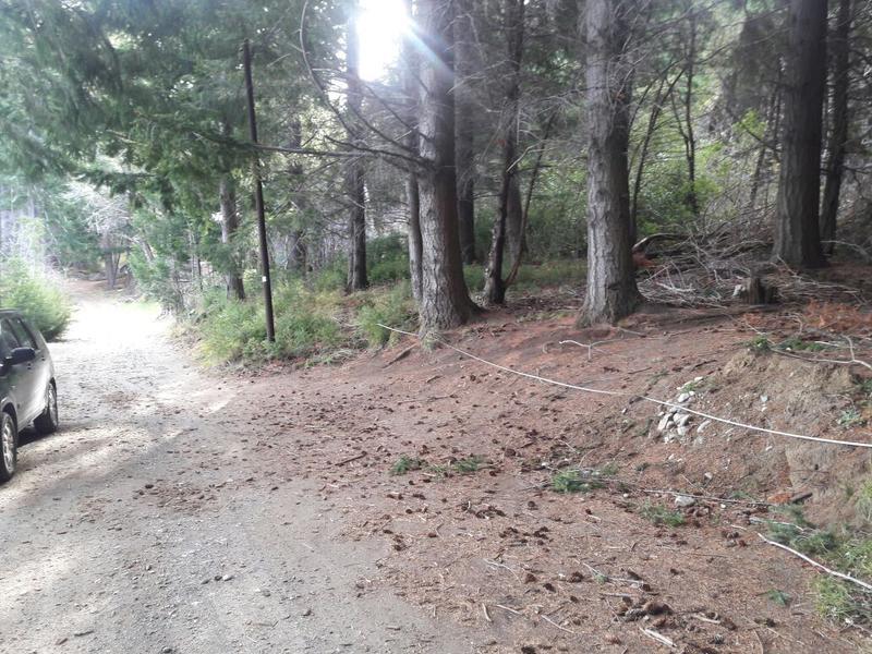 Foto Terreno en Venta en  Bariloche ,  Rio Negro  Las Cartas