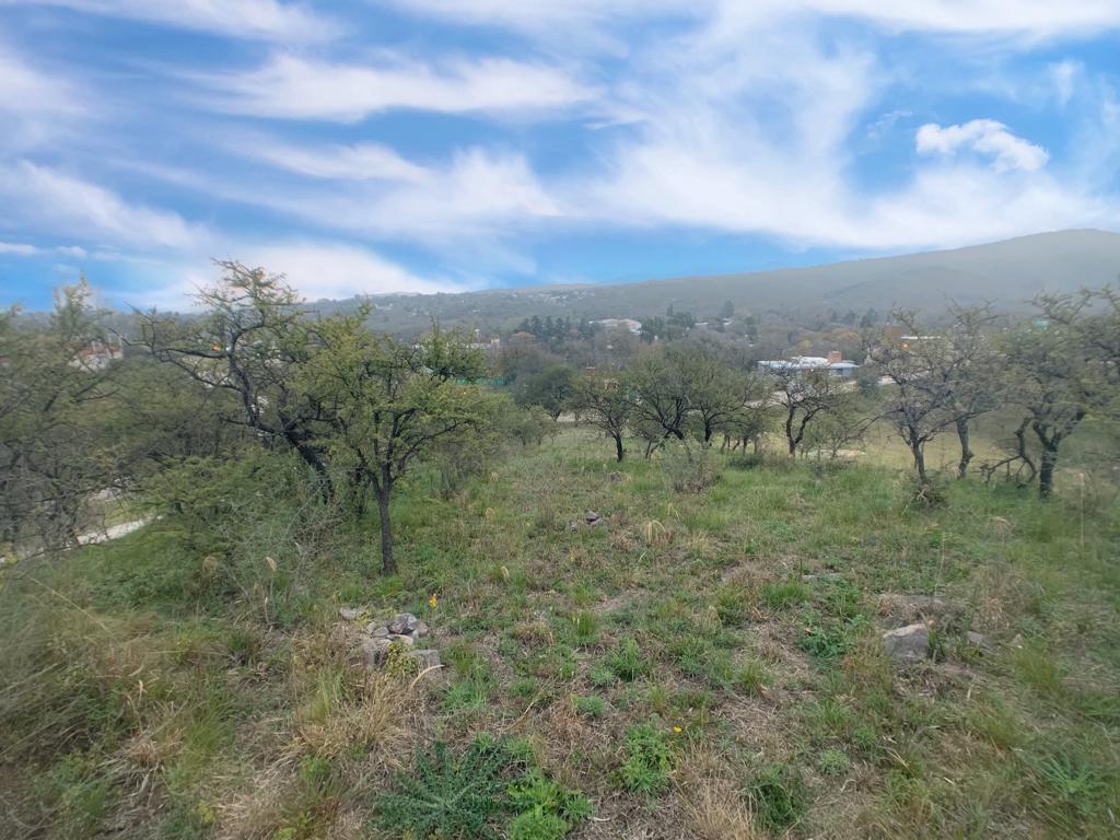 Foto Terreno en Venta en  Cumbres del Golf,  Villa Allende  Cumbres del Golf