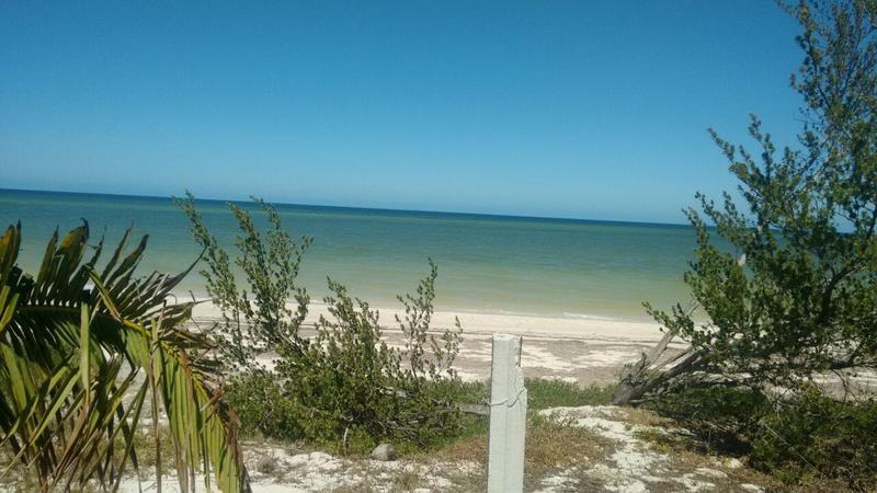 Foto Terreno en Venta en  Telchac Puerto ,  Yucatán  TERRENO DE 720 M2 FRENTE A LA PLAYA EN SANTA CLARA YUCATAN