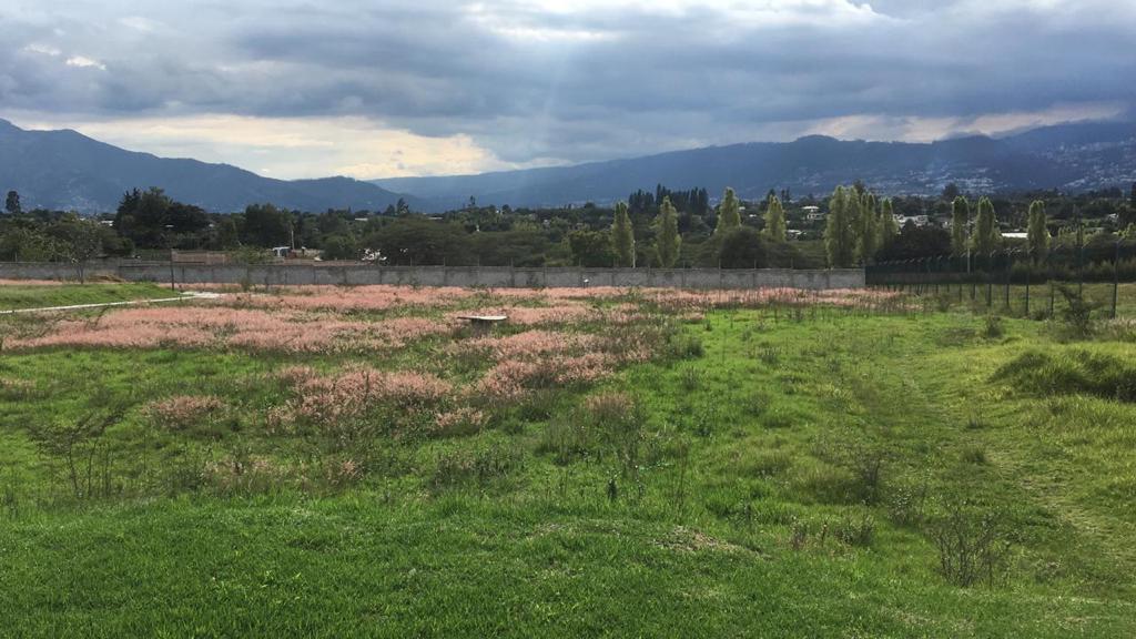 Foto Terreno en Venta en  Tumbaco,  Quito  Hilacril - Tumbaco
