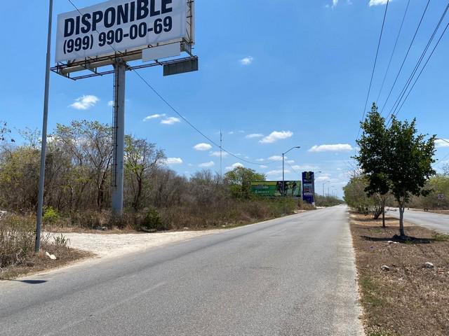 Foto Terreno en Venta en  Mérida ,  Yucatán  Terreno en venta al Norte de Mérida - Mérida