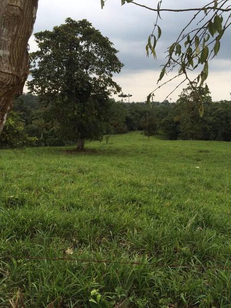 Foto Quinta en Venta en  Norte de Santo Domingo,  Santo Domingo  Santo Domingo