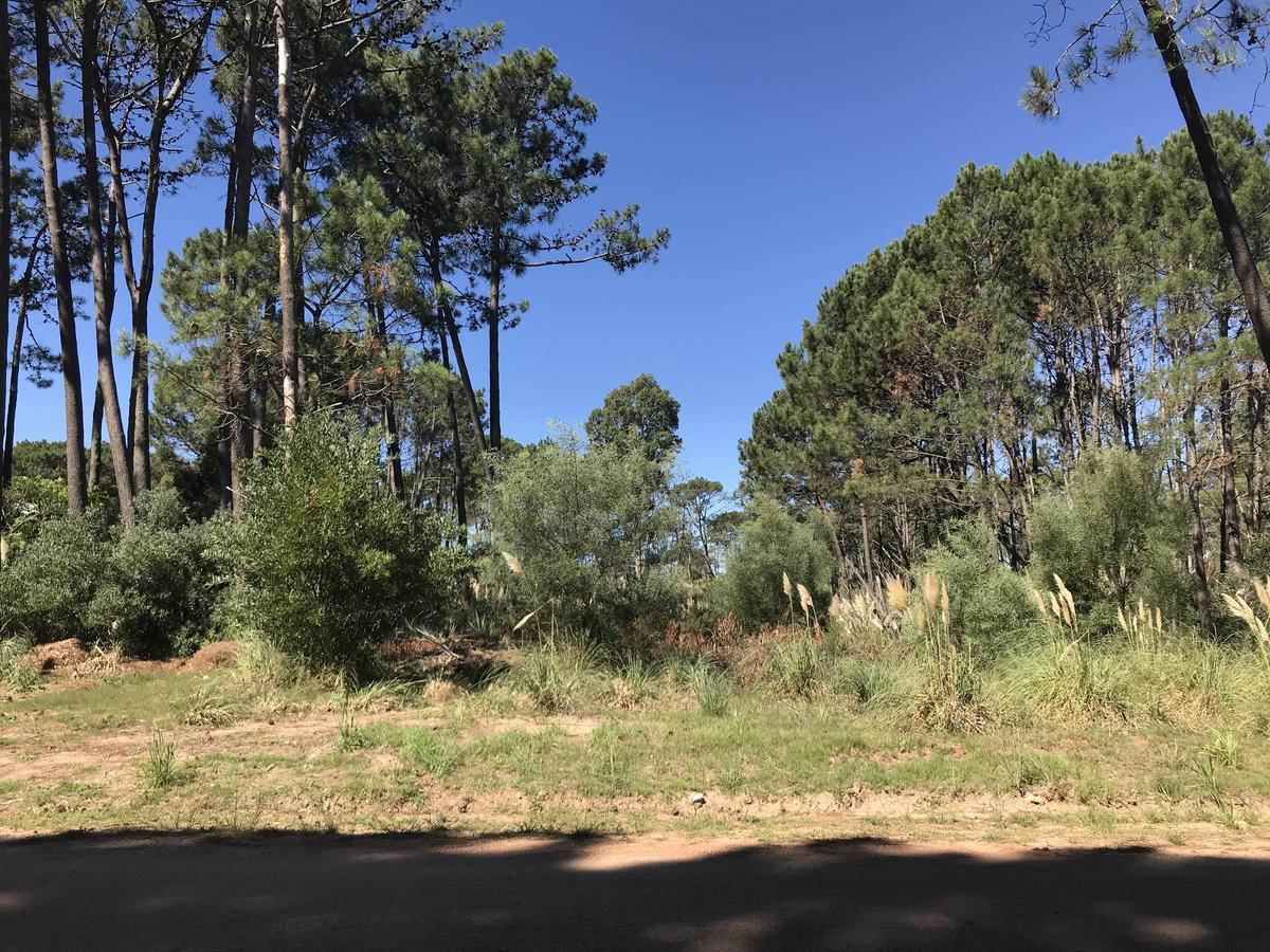 Foto Terreno en Venta |  en  La Barra ,  Maldonado  Barra Verde Posibilidad de Subdividir en 2