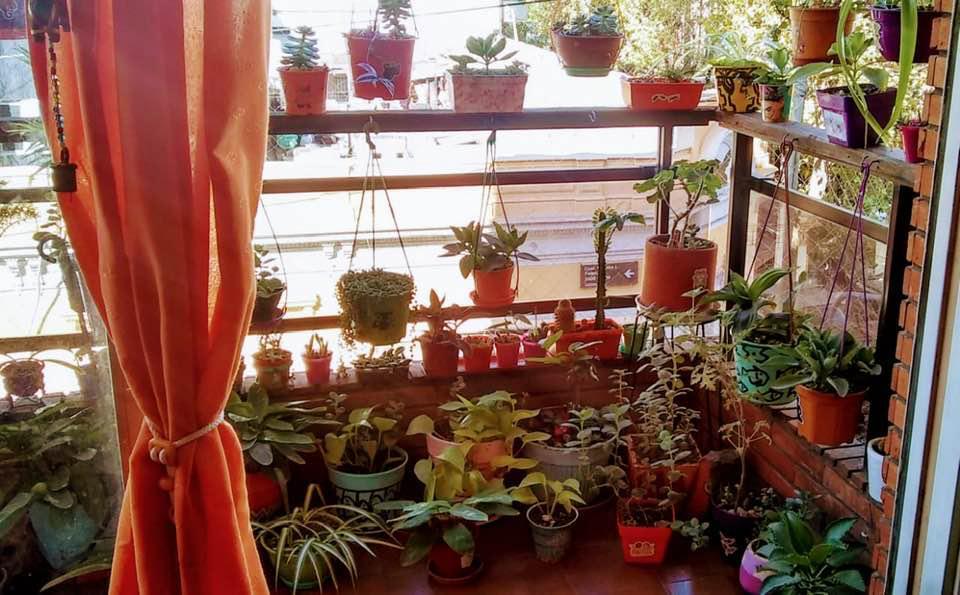 Foto Departamento en Venta en  Flores Norte,  Flores  Coronel Ramon L Falcon 2495, 3er Piso