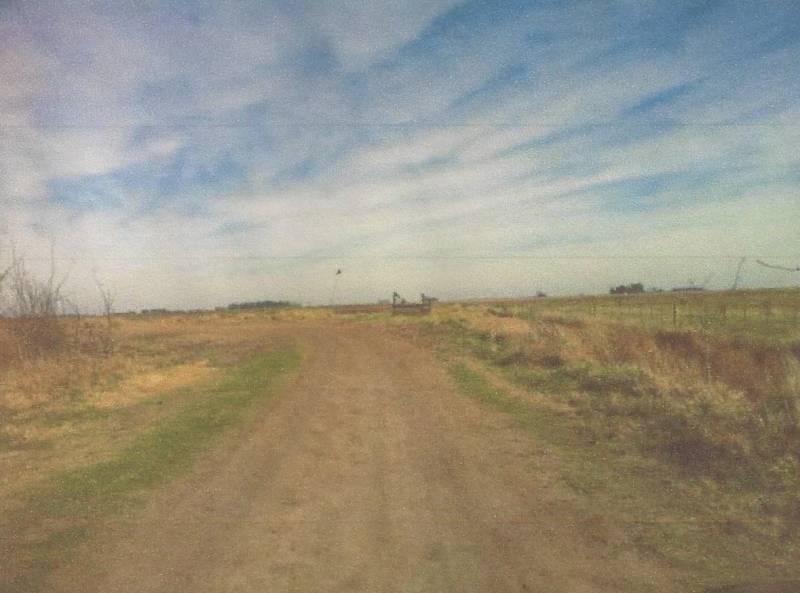 Foto Campo en Venta en  Pardo,  Las Flores  al norte del arroyo EL GUALICHO 1