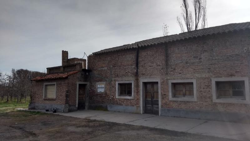 Foto Chacra en Venta en  Villa Regina,  General Roca  CHACRA 5HA. CON CASA ANTIGUA