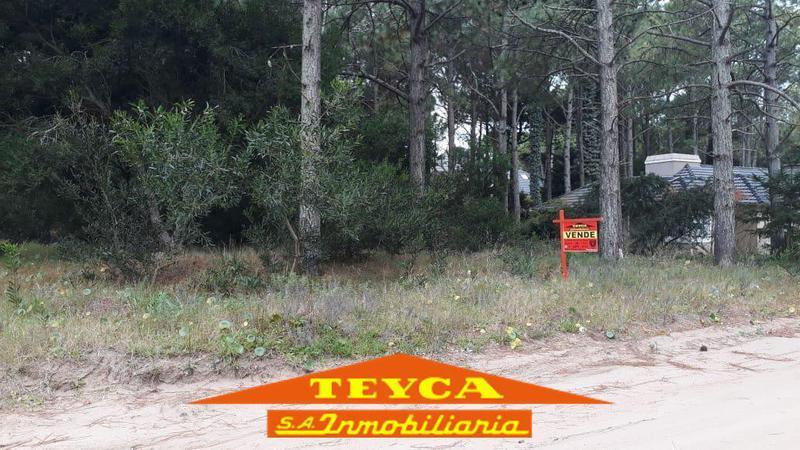 Foto Terreno en Venta en  Pinamar Norte,  Pinamar  Penelope Esq. Fragata la victoria