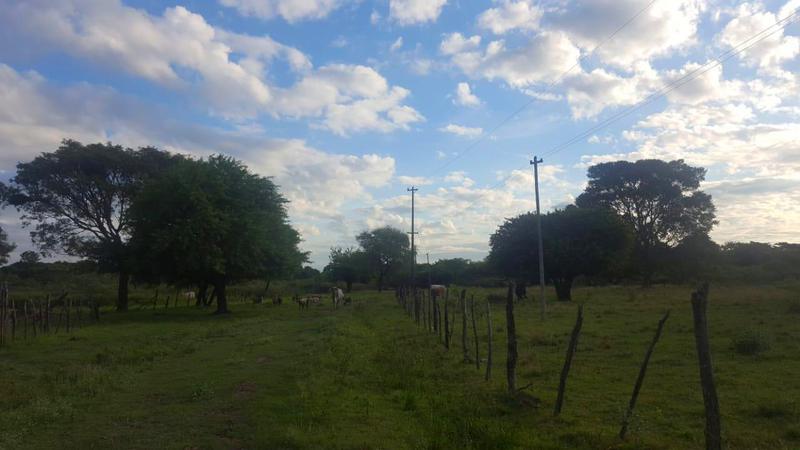 Foto Terreno en Venta en  Villa Hayes,  Villa Hayes  Chaco'i, zona TOSA
