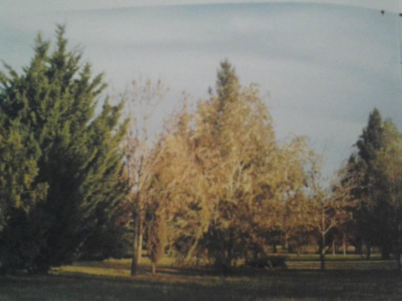 Foto Terreno en Venta en  Club Miralagos,  Countries/B.Cerrado (La Plata)  RUTA 2 KM 65