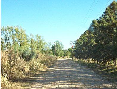 Foto Campo en Venta en  Torres,  Lujan  Torrres,  a 300  ruta 192