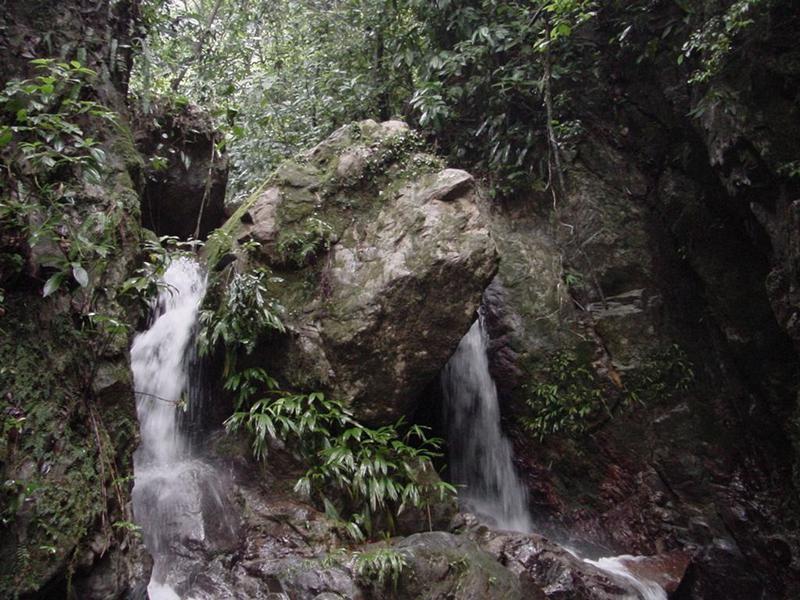 Foto Quinta en Venta en  La Masica,  La Masica  Increíble Propiedad en Venta para Inversión en La Másica, Atlantida