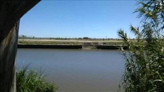 Foto Terreno en Venta en  Tigre,  Tigre  AVELLANEDA al 500 entre Quintana y Sarmiento