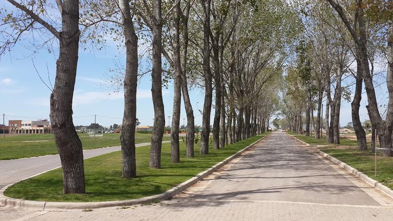 Foto Terreno en Venta en  La Alameda,  Canning (E. Echeverria)  Venta - Lote en La Alameda