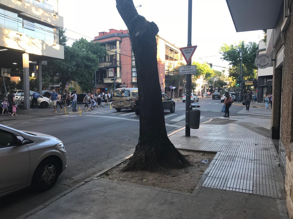 Foto Local en Alquiler en  Palermo Soho,  Palermo  Gorriti al 5000