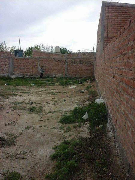 Foto Terreno en Venta en  San Patricio Del Chañar,  Añelo  Ruta 7.