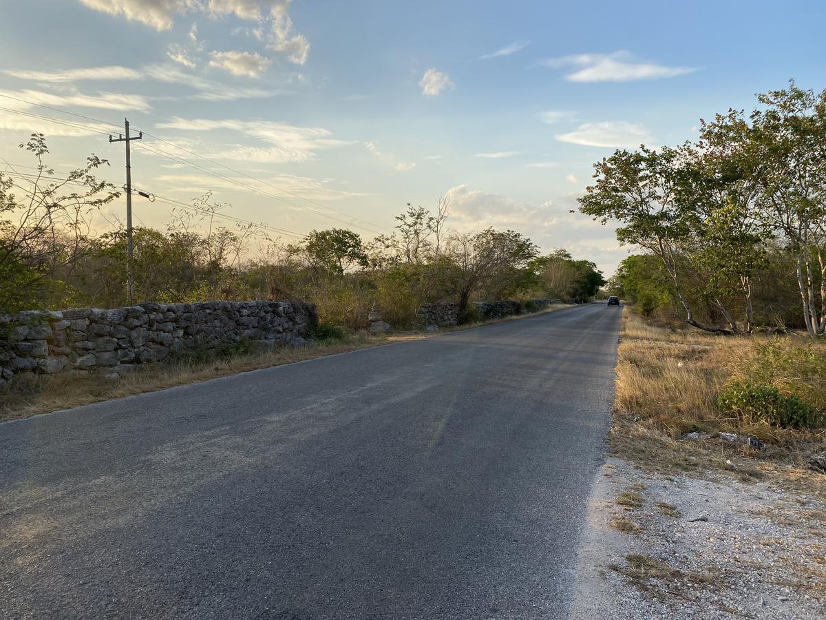 Foto Terreno en Venta en  Pueblo Sierra Papacal,  Mérida  6 hectáreas en venta en mérida, yucatan- En sierra papacal (con financiamiento)