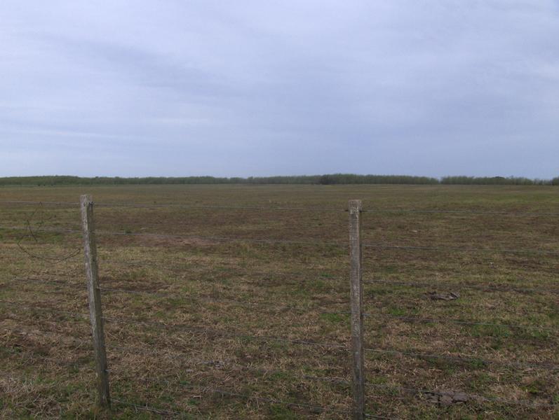 Foto Campo en Venta en  Pardo,  Las Flores  Ruta 3 km 220