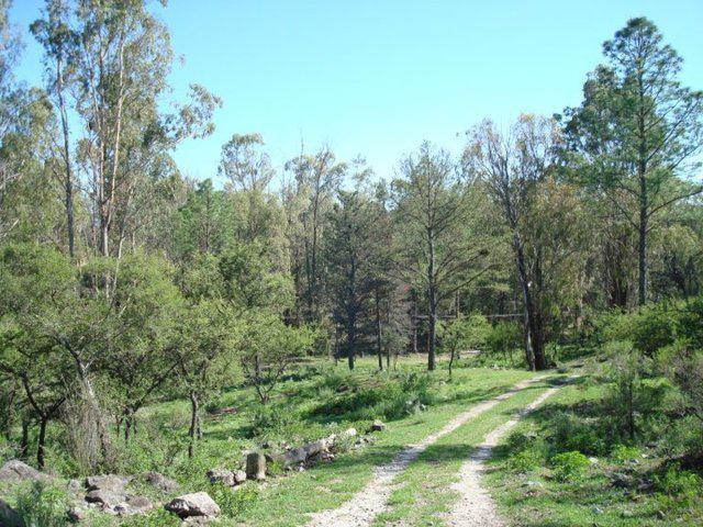 Foto Campo en Venta en  Villa Del Dique,  Calamuchita  La Sierrita Villa del Dique, Chacra 8