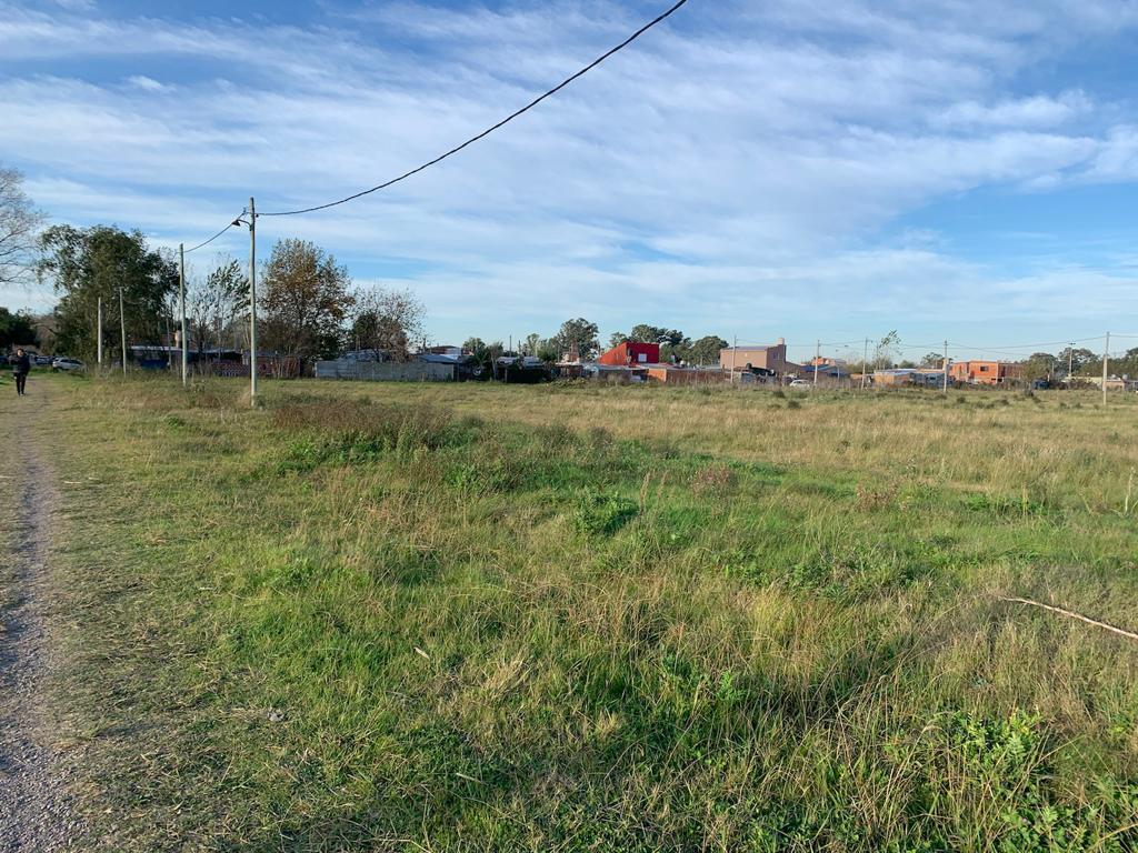 Foto Terreno en Venta en  La Plata,  La Plata  80 bis y 141