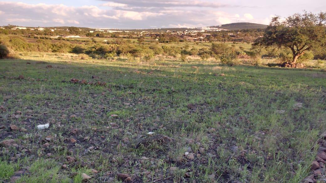 Foto Terreno en Venta | Renta en  Rancho o rancheria San Vicente Ferrer,  El Marqués  SAN VICENTE FERRER