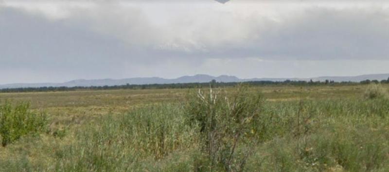 Foto Campo en Venta en  San Rafael ,  Mendoza  Ruta 146