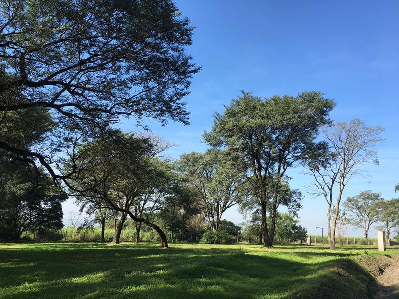 Foto Terreno en Venta en  Pedemontana,  Countries/B.Cerrado (Yerba Buena)  COUNTRY LA ARBOLEDA/L3