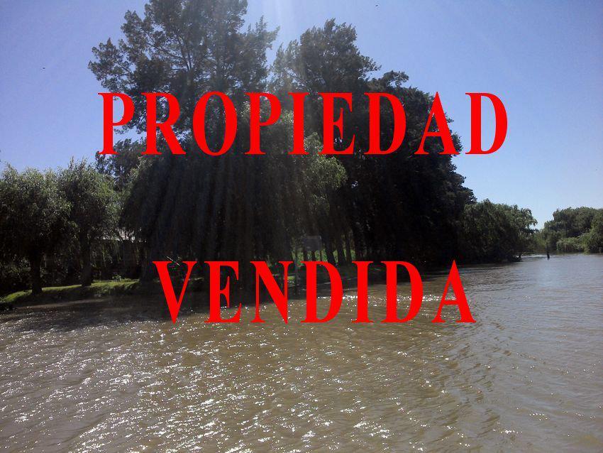Foto Terreno en Venta en  Parana De Las Palmas S. Fernando,  Zona Delta San Fernando  Paraná de las Palmas y Paicarabi