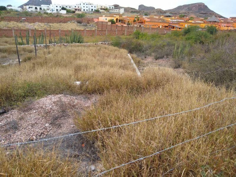 Foto Terreno en Venta en  Country Club,  Guaymas  Terreno en Venta en san Carlos, Nuevo Guaymas, Sonora