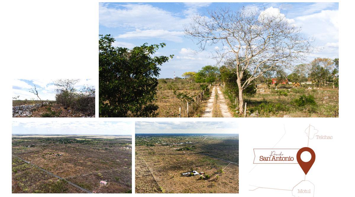 Foto Quinta en Venta en  Motul ,  Yucatán  Rancho San Antonio - Motul, Yucatán