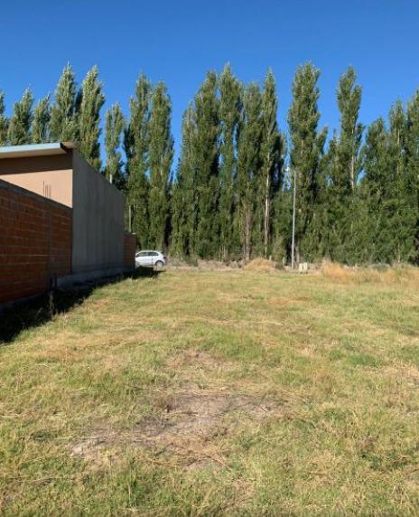 Foto Terreno en Venta en  Confluencia ,  Neuquen  Altos de Alberdi 4