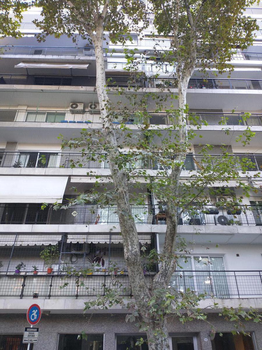 Foto Departamento en Alquiler en  Palermo ,  Capital Federal  República de la India al 3100